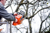 A lumberjack worker cutting branches from tree for fire wood wit — Stock Photo