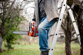 Man cutting wood from trees climbing a ladder and using a chains — Stock Photo