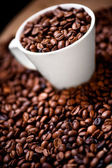 Fresh white cup of hot brazilian coffee beans — Stock Photo