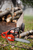 Gasoline powered chainsaw and pile of wood in forest — Stock Photo