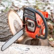 Gasoline powered chainsaw with tools and chopped trees against leaves and winter background — Stok fotoğraf