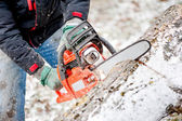Woodcutter or lumberjack cutting fire wood in garden during winter against snow background — Stock Photo