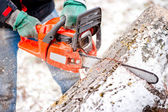 Adult worker cutting trees with chainsaw and tools — Stock Photo