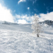 Dreamy sunny landscape in Austrian Alps during winter, in remote ski area with blue sky and powder snow everywhere — Stock Photo #37077615