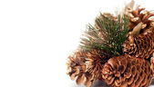 Christmas Decoration with cones and tree pines isolated on white background — Stock Photo