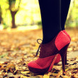 Woman feet with pink and black fashion shoes on a late autumn shooting — Stock Photo