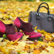 Woman fashion accessories like fancy pink shoes and brown bag against autumn leaves — Stock Photo