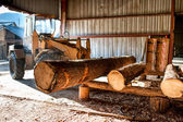 Industrial log loader operating at industrial wood production factory — Stock Photo