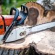Gasoline powered professional chainsaw on pile of cut wood, timber wood — Stock Photo #46383885