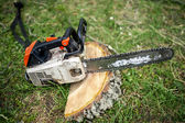 Professional chainsaw on pile of fresh cut wood or timber — Stockfoto