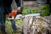 Man cutting trees using an electrical chainsaw and professional tool — Stock Photo