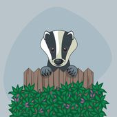 Cute Badger — Stock Vector