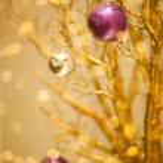 Golden Merry Christmas Winter Background - Xmas Design — Stock Photo
