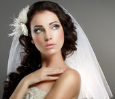 Wedding. Young Gentle Quiet Bride in Classic White Veil Looking Away — Stock Photo