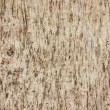 Weathered wooden plank — Stock Photo #17449375