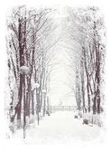 Winter walkway in a park — Stock Photo