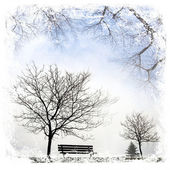 Winter landscape with barred tree — Stock Photo