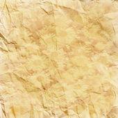 Sedmikrásky na rozpadl starý sépiový papír — Stock fotografie