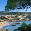 Stock Photo: CalTaridbeach in Ibiza, Spain