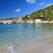 Cala Vadella beach in Ibiza, Spain — Stock Photo