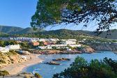 Cala Tarida beach in Ibiza, Spain — Stock Photo