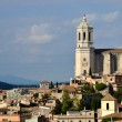 City of Girona with the Cathedral — Stock Photo