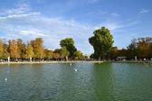 Tuileries Gardens in Paris, France — Stock Photo