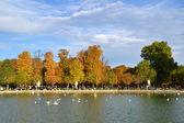 Tuileries Gardens in Paris — Stock Photo