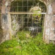 Old arched culvert in an old stone wall — Stock Photo