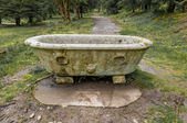 Old concrete bath in a garden — Stock Photo
