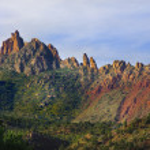 Zion National Park — Stock Photo