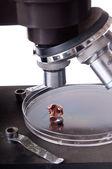 Old microscope — Stock Photo