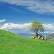 Green rolling hills under blue sky — Foto Stock