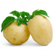 Stock Photo: Potatoes with leaves