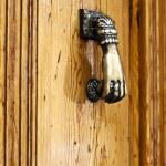 Bronze knocker on the  bright wooden door — Stock Photo #21529689
