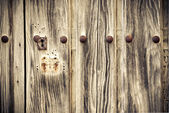 Detail of an old wooden door — Stock Photo