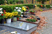Tombs and leaves on path at cemetery — Stock Photo