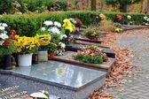 Tombe e foglie sul percorso al cimitero — Foto Stock
