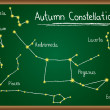 Stock Vector: Autumn Constellations on chalkboard