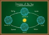Seasons of the year on chalkboard — Stock Vector