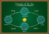 Seasons of the year on chalkboard — Stock Vector