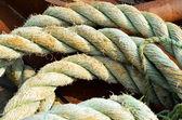 Worn marine rope — Stock Photo