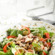Fresh salad with tasty garnish — Zdjęcie stockowe