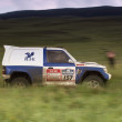 Silk-way rally championship russian 2012 — 图库照片