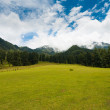 Stock Photo: Kashmir Aru Valley Pahalgam Hill Mountain Nature