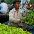 Dal Lake Floating Market Weighing Vegetables Boat — Stock Photo