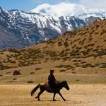 Buddhist Pilgrim Man Riding Horse Mountain — Stock Photo