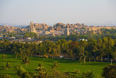 Wide Angle Hampi Ruins Landscape Lush — Stock Photo