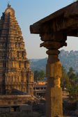 Partial Hampi Temple Stone Carving Column — Stock Photo