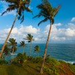 Nature Landscape Ocean Horizon Mirissa Sri Lanka — Stock Photo